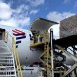 LATAM Cargo inaugura em Guarulhos câmara fria para exportação de perecíveis